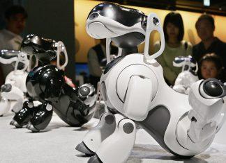 сони роботы